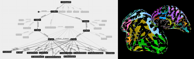 Neuroinformatics2011_small.png